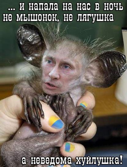 Москва хочет вернуть Ерофеева и Александрова домой, - консул РФ Грубый - Цензор.НЕТ 1032