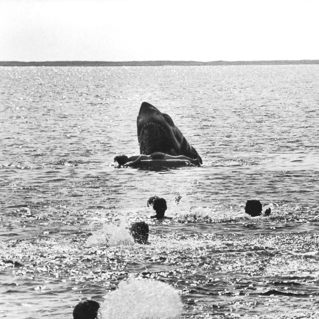 Deleted scene from #JAWS - the death of the Kintner boy.   In the film all you see is the kid pulled off his raft! http://t.co/P2YQZ3mY8R