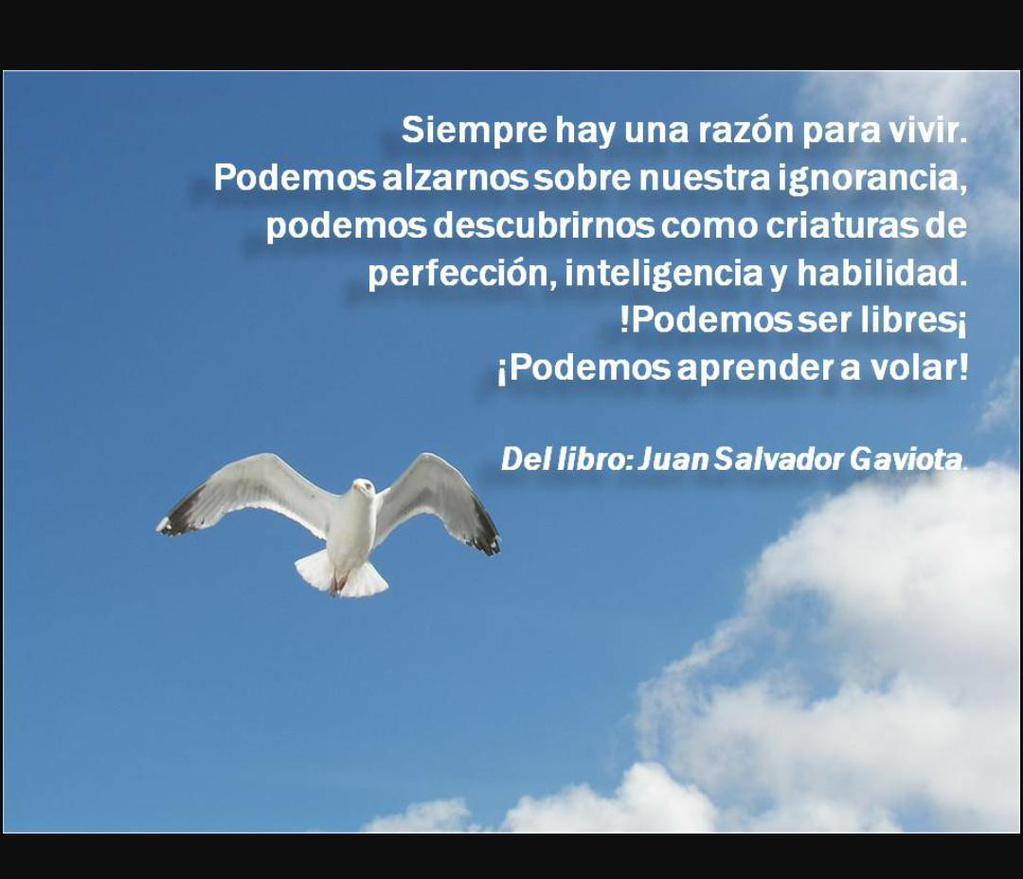"Maria Celeste Lauria on Twitter: ""Frases del Libro Juan"