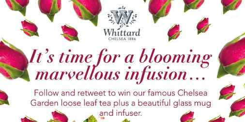 Follow @WhittardUK & retweet to #win Chelsea Garden tea, glass mug & infuser Ends 11/5/15 10am http://t.co/YINsSEHDvP http://t.co/5fcRB4KPNS