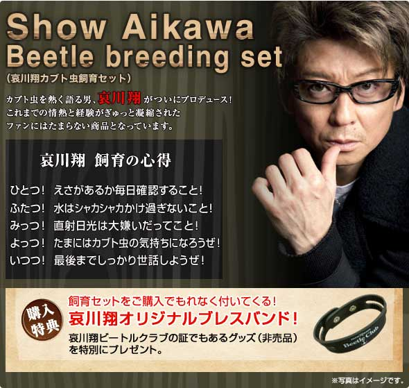 哀川翔さんついにカブトムシでギネスへ! 飼育セットに講習会とアニキのカブトムシ事業が手広すぎ【動画あり】