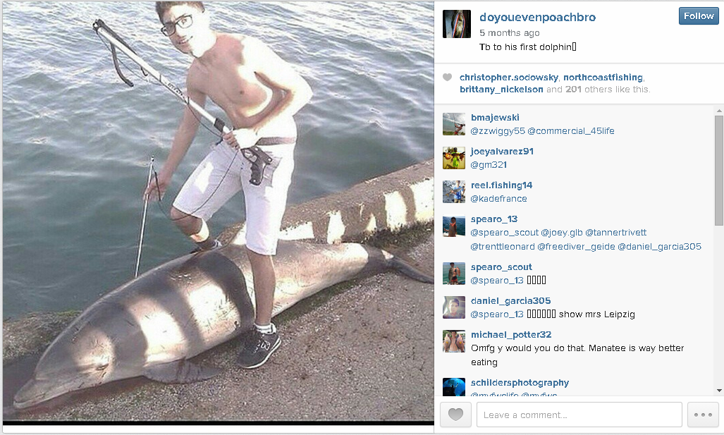 """@NOAA needs UR help 2 prosecute this criminal... #Blackfish http://t.co/hS4xNdYxkk"" via @jeffrey_ventre @OrcaSOS"