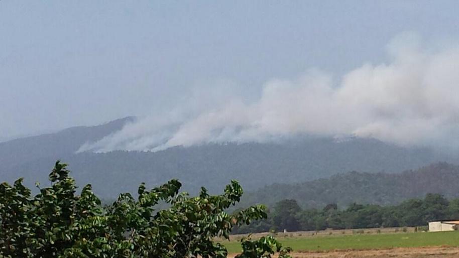 Loma Miranda afectada por incendio