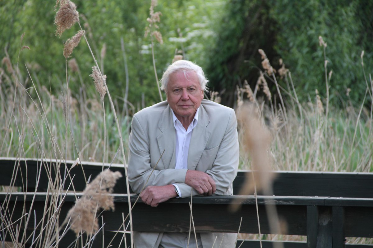 Happy 89th birthday to our Vice President, the one and only Sir David Attenborough! :) http://t.co/C648QJ0Rxh