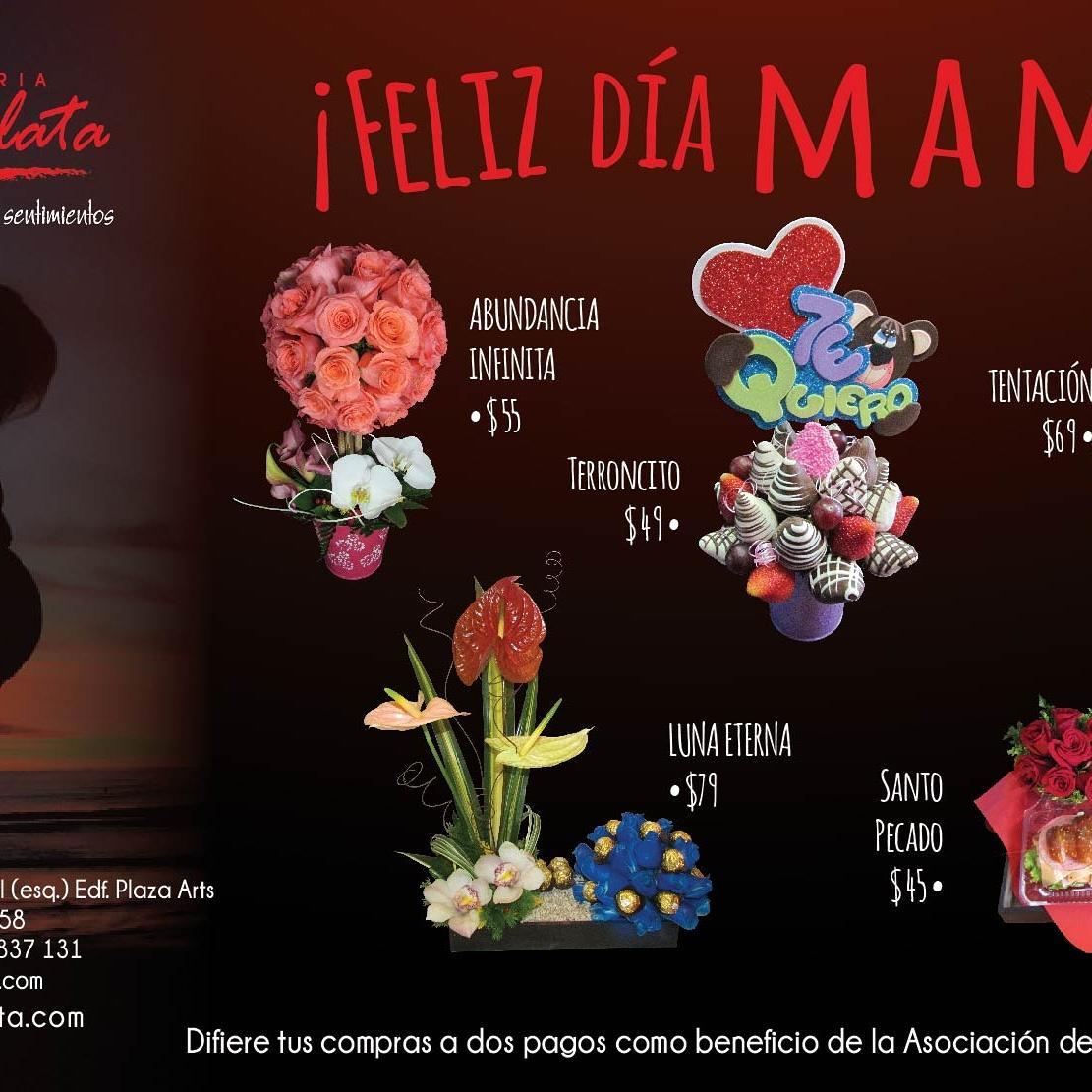 Floreria Escarlata On Twitter Porque Eres Fuente De Vida