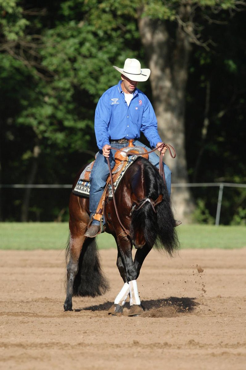 Check out this Quick Tip from reining horse professional Craig Schmersal >>>http://t.co/IiodljJakX #horses #QHNBlog http://t.co/mF0Q0Pg3Q3