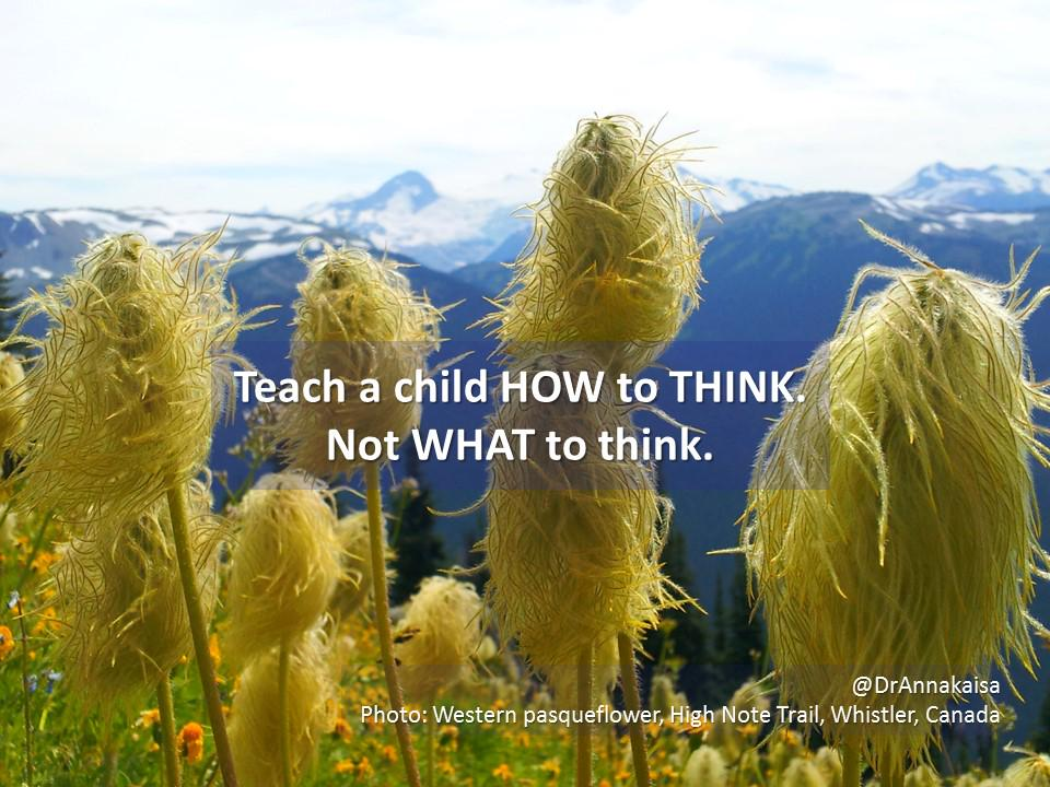 Teach a child HOW to think instead of WHAT to think. Then they learn to solve problems #EveryChildNeeds #parenting http://t.co/98CxjQPHS5