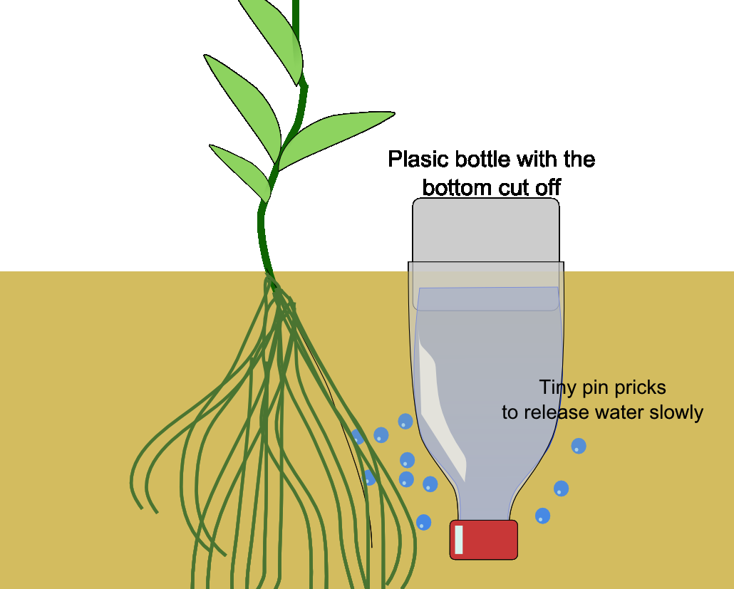 Uci Dining On Twitter Growing Plants Reuse Plastic