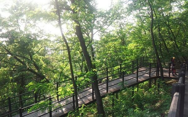 Ууланд алхаж байгаад ирэв. Богд ууланд ийм зам байвал яах бол?. . . http://t.co/nLdYgtsqtr