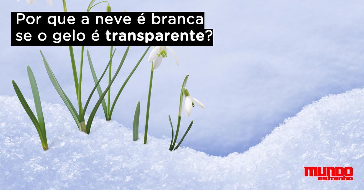 Por que a neve é branca se o gelo é transparente? http://t.co/Jx4DE7Pzki