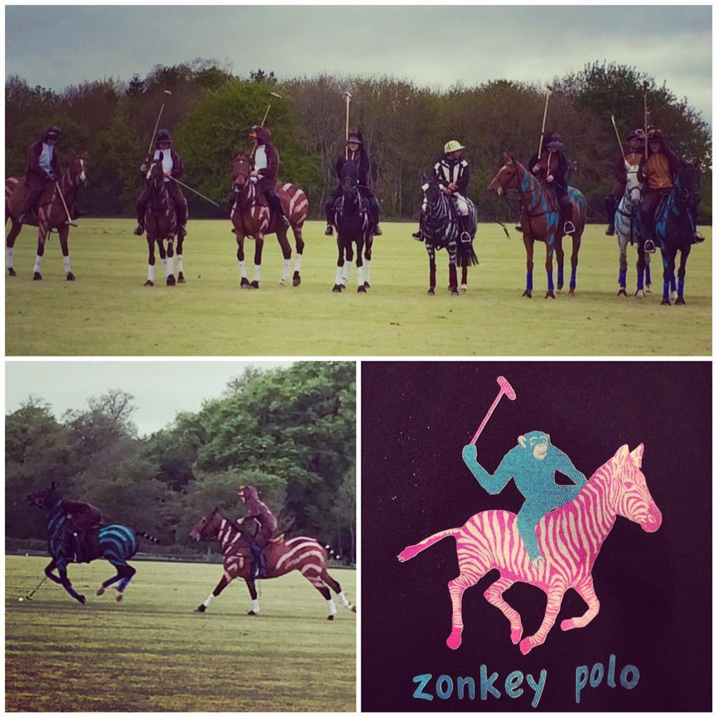 Zonkey Polo