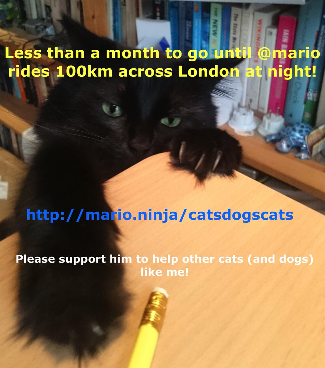 Under a month until my 100km night ride for the cats & dogs of @BDCH - appreciate any support! http://t.co/3cGPrKF7L5 http://t.co/zwaICFWoJt