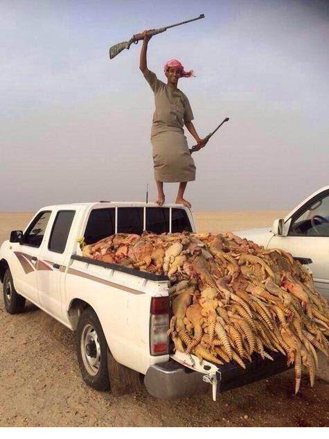 Baghdadi Al-Rolexi on Twitter: