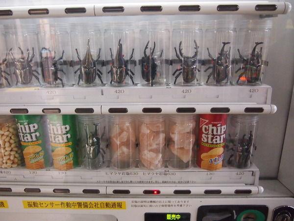 秋葉原万世ビル隣の自販機コーナーは、売ってるものが「チップスター」「カブト虫」「ヒマラヤ岩塩」「ヒマラヤ岩塩」「ヒマラヤ岩塩」「チップスター」「カブト虫」である 。another-tokyo.com/archives/50535… pic.twitter.com/6d27AC2qrU