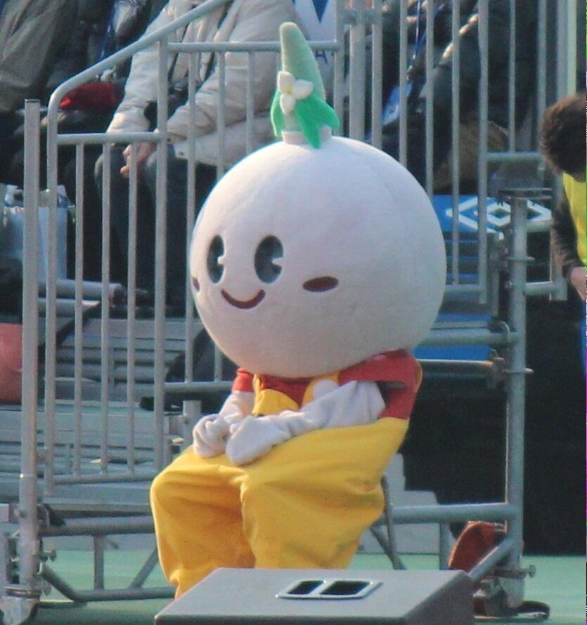 Q.これはゆるキャラですか?  A.ガンバ大阪のガチサポです。  #Jリーグ新規顧客獲得のための相談コーナー http://t.co/w30M161cY8