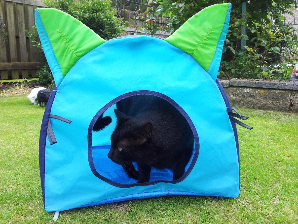Hamish McCat on Twitter  @RosieandRollo @phillips428 @IKEA dear IKEA please make more cat tents for us. Love Hamish  & Hamish McCat on Twitter: