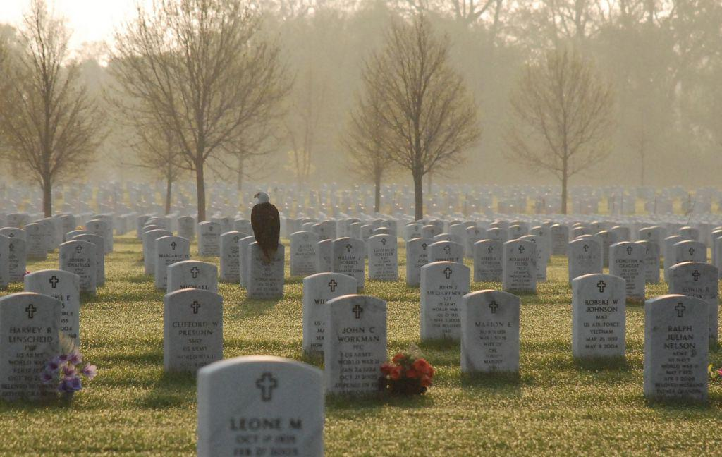 Photo of eagle on Fort Snelling gravestone touches hearts http://t.co/L6UyODsYzH #MemorialDay http://t.co/p2dlBS1LM8