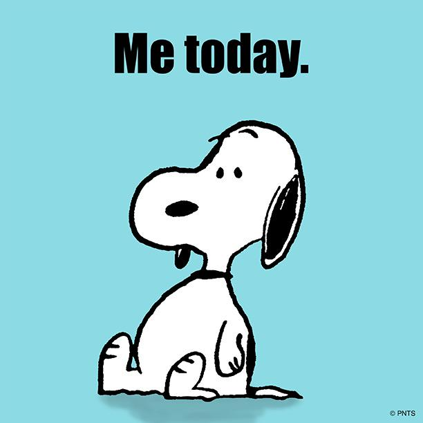 peanuts on twitter quotate too much httptcodae59i2wl8quot
