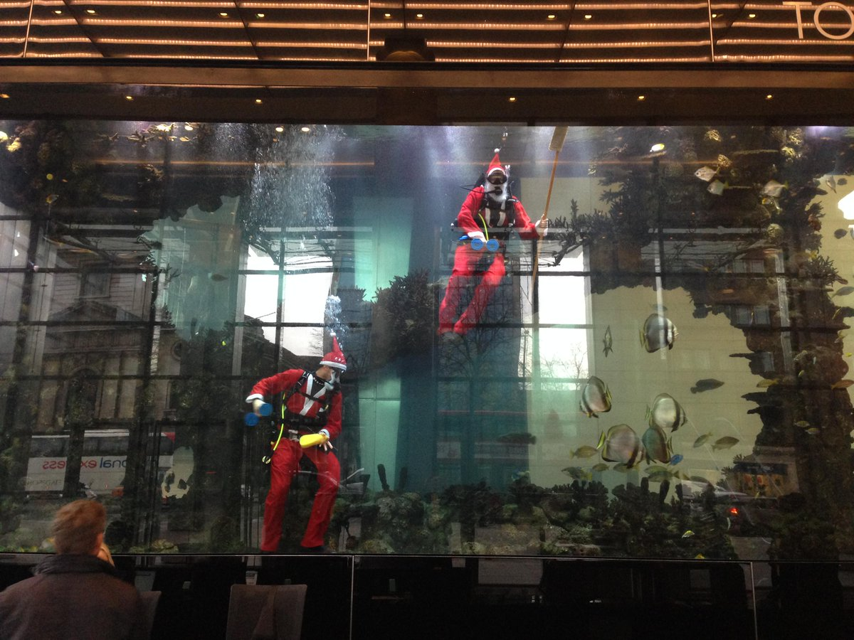 Salesforce careers on twitter anatimofei here 39 s santa for Tower fish tank