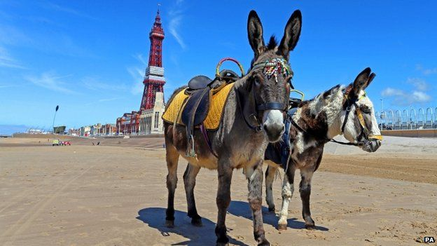 HAVE YOUR SAY: Would you swim in the sea at #Blackpool? RT for NO Fav for YES. http://t.co/yFYPXZlZBU