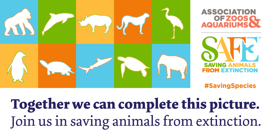 Today we're launching a bold new effort focused on saving species from extinction. #SavingSpecies http://t.co/zWAThAsAIG