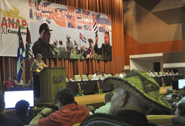 Establecen nueva política de precios de insumos para la agricultura cubana