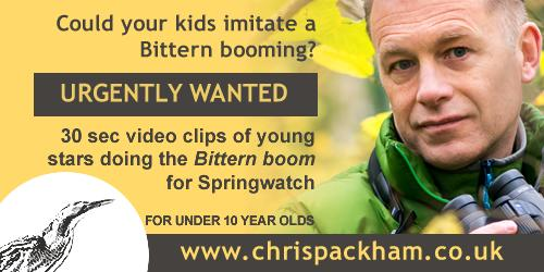 Chris Packham asks children to imitate bitterns