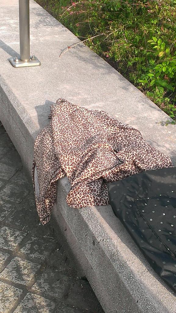 天王寺公園。暑い。もう夏の雰囲気。大阪のオバチャンが脱皮した跡があった。 pic.twitter.com/Ds73mSaYMJ