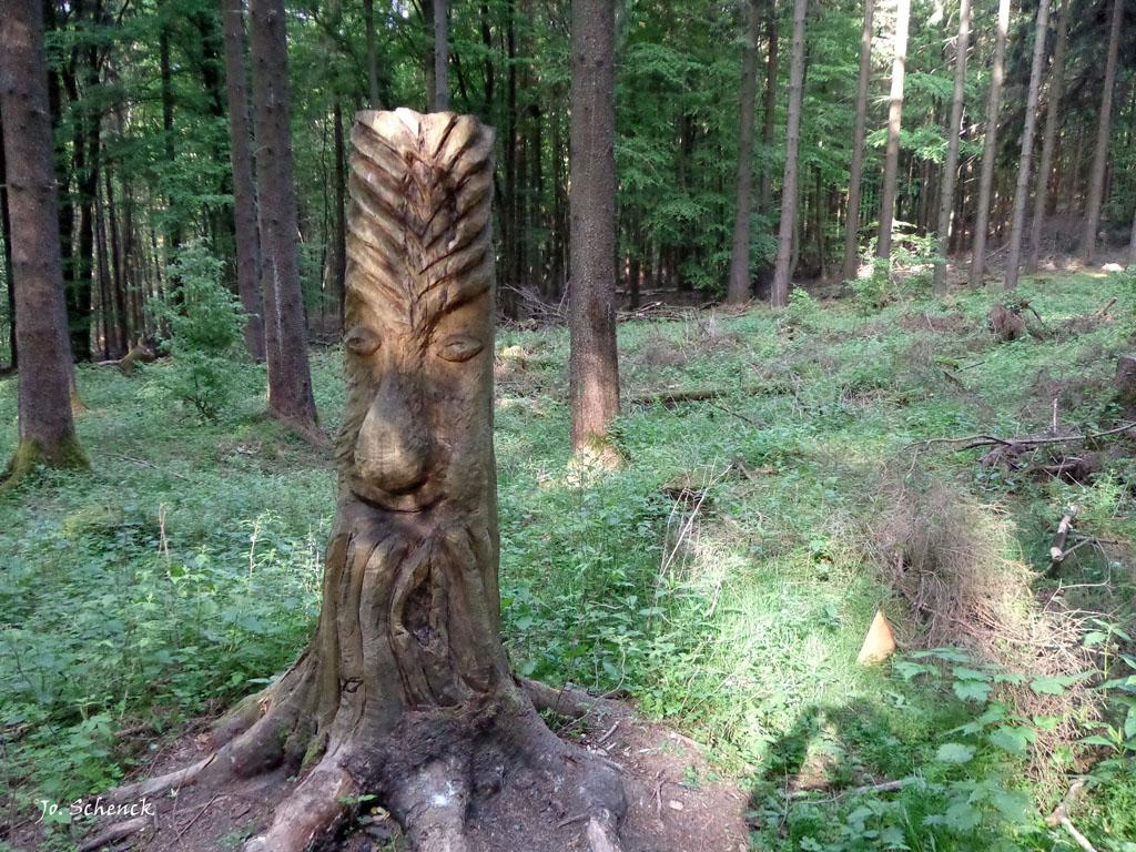 Wood art in the forest: http://t.co/gPtkMaZ437