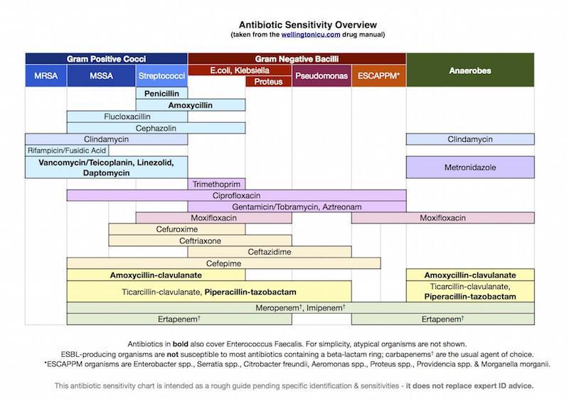 Medstudentsblog on twitter antibiotic susceptibility chart handy