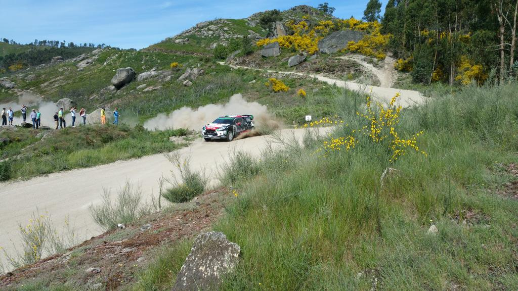 [INFORMATION] La DS 3 WRC 2015 change de look ! CFR2pOGWAAEjmI5