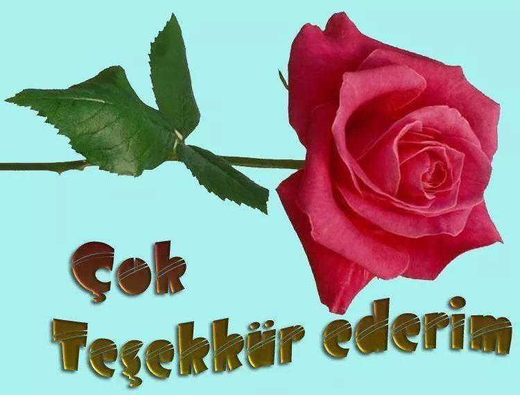 Открытка днем, картинка спасибо на турецком языке