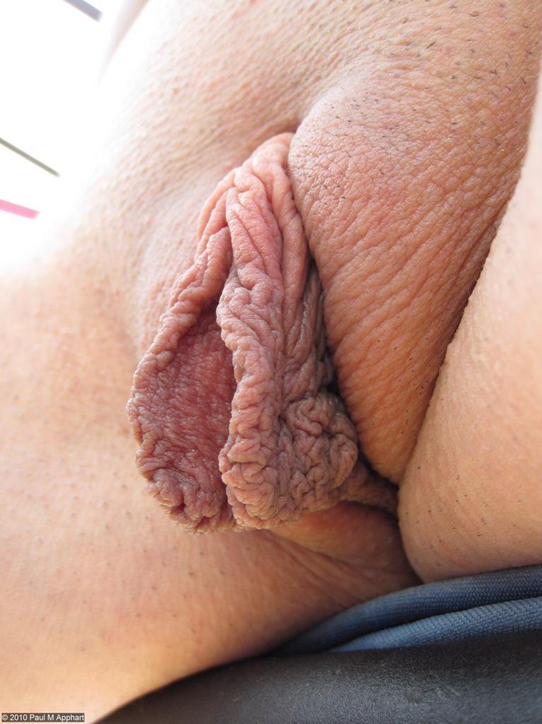 Пухлых половых губ фото