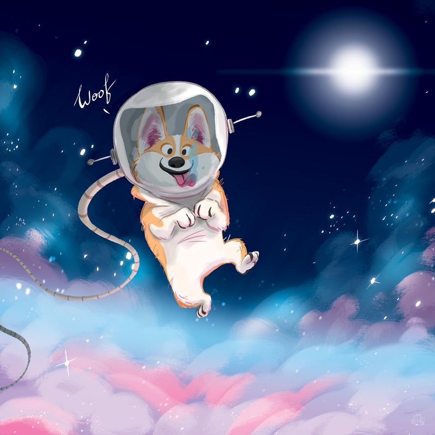 лампе, затем картинки животные в космосе например, считаю