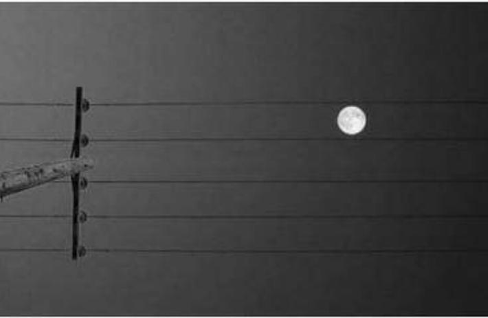 달이 미칠수도 있다 http://t.co/VyFRUTdmh7
