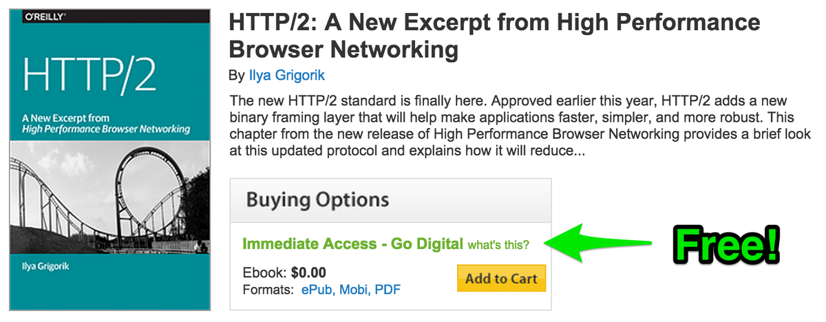 High Performance Browser Networking Pdf