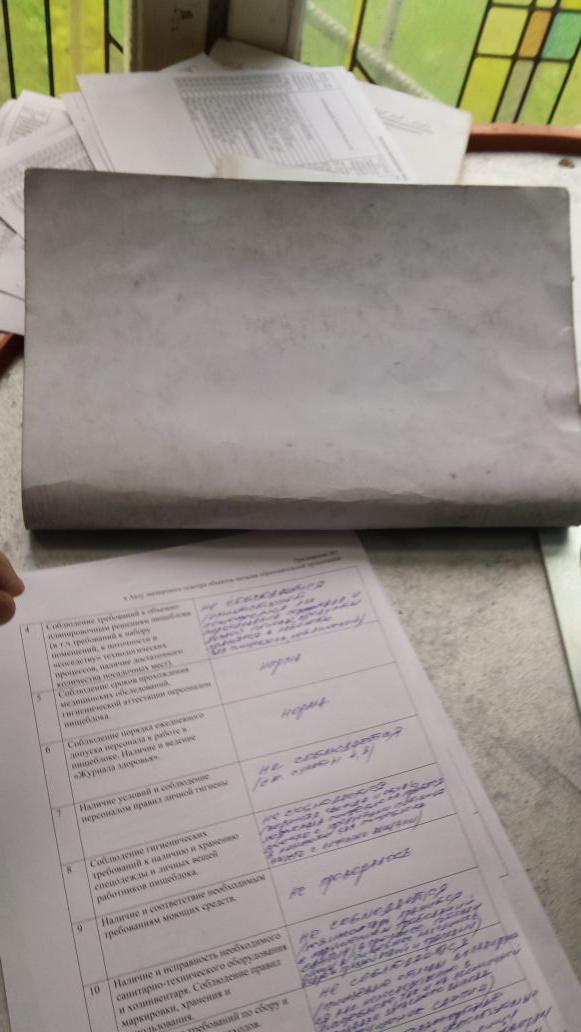 акт по результатам аудиторской проверки образец заполнения