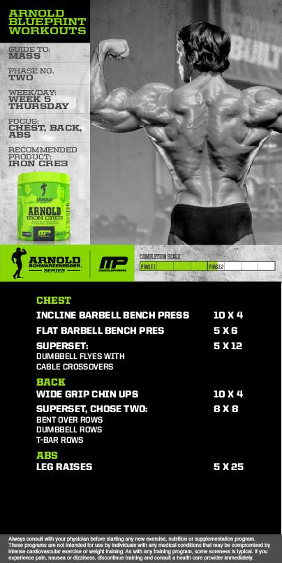 Arnold schwarzenegger blueprint trainer day 1 arnold schwarzenegger musclepharm on twitter workout of the day arnold malvernweather Gallery