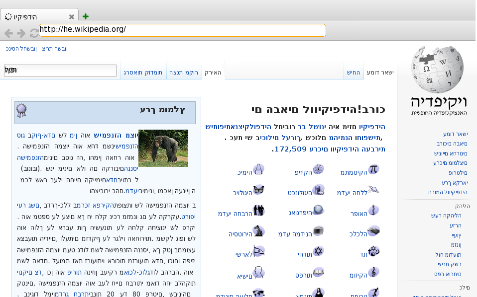 Hebrew Wikipedia in servo-shell