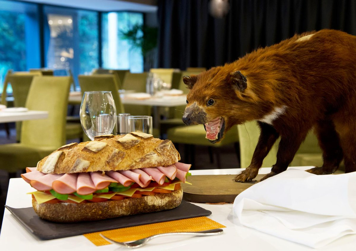 Our caption contest ends Friday! See the pics, have a go & win a city weekend: http://t.co/FW3XudnutV @PullmanSydHP http://t.co/KMPlwhE9ml