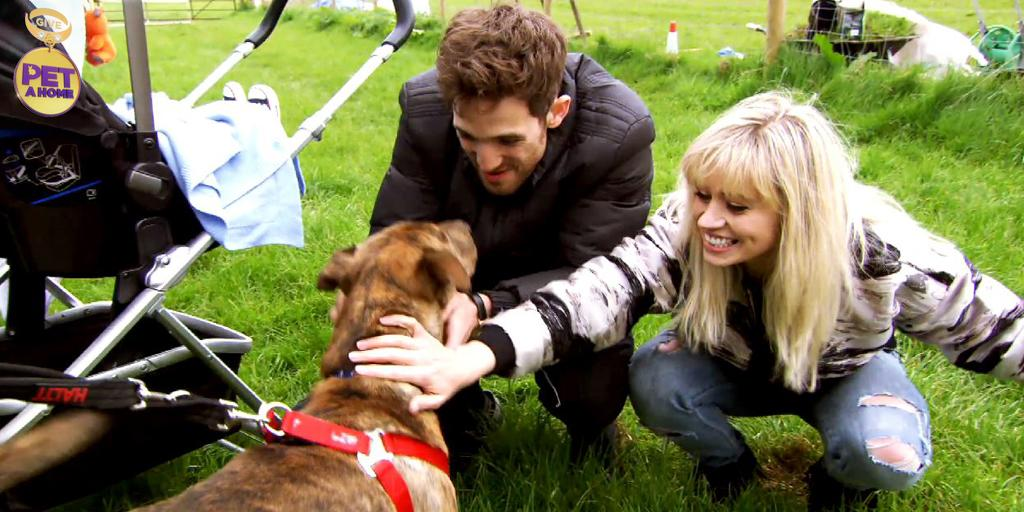 RT @giveapetahome: It was inevitable that you'd rehome an animal before the end of the show, right @KimberlyKWyatt? #GiveAPetAHome http://t…