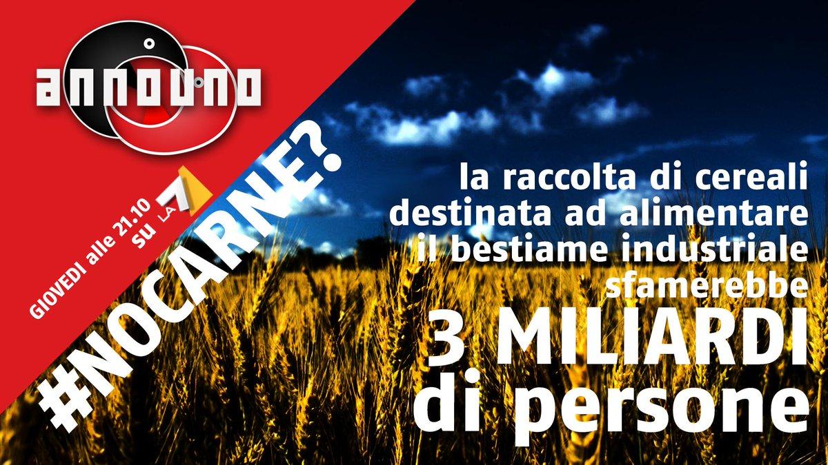 """STASERA IN TV, GUESTSHARE & TOTOSHARE GIOVEDÌ 21 MAGGIO 2015: """"A COLAZIONE DA TIFFANY"""" (RETE4) GLI ITALIANI COGLIERANNO, PER LA SECONDA VOLTA, """"LA GRANDE BELLEZZA"""" DI CANALE5? POTRANNO INVECE RIFUGIARSI NELLA POLITICA DI PORRO (RAI2), VIRARE SU """"ANNOUNO"""" (LA7), OPPURE CATAPULTARSI IN SPAGNA CON """"VELVET"""" (RAI1); ALTRIMENTI SU ITALIA1 ACCOMPAGNERANNO GLI IMPRENDITORI DI """"SHARK TANK"""" IN QUESTA NUOVA AVVENTURA"""