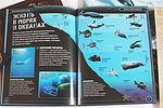 Жизнь в морях и океанах реферат