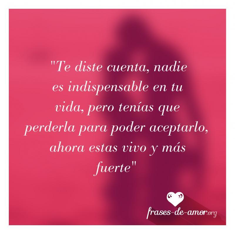Frases De Amor On Twitter Te Diste Cuenta Nadie Es