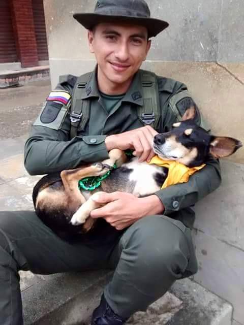 """FOTO Il cane """"principe"""" con il suo salvatore"""