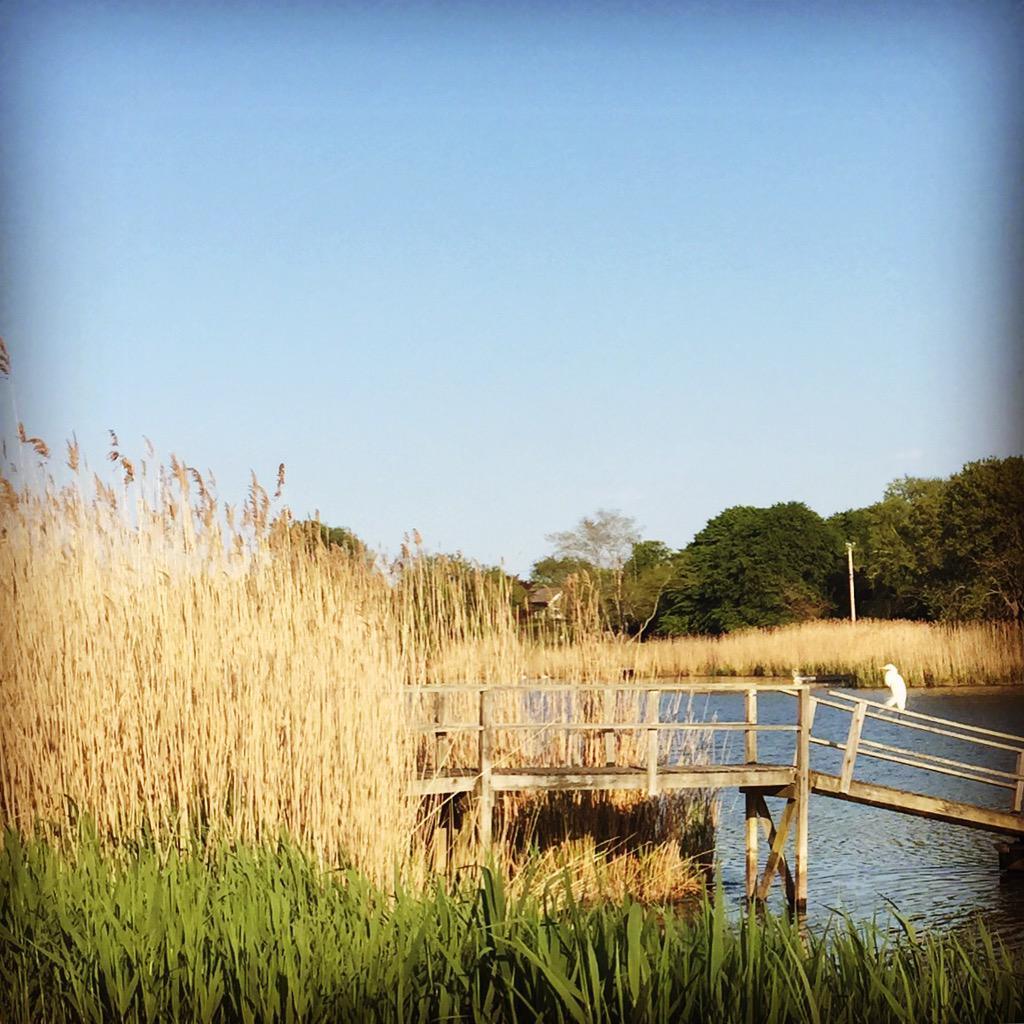 sittin' on the dock of the bay #lyricstoliveby 🎵 http://t.co/HyBRCcU1jT