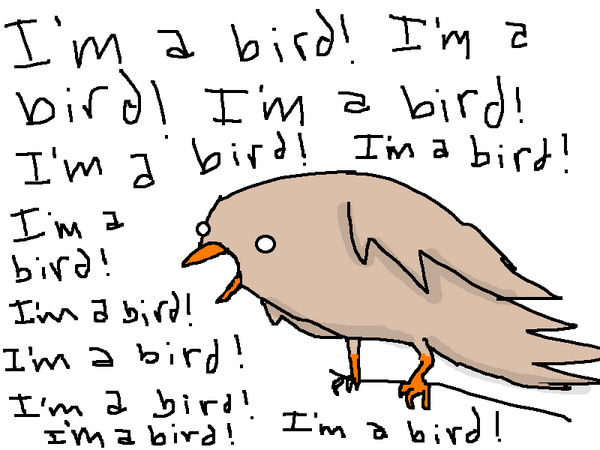 Ever wonder what the birds are saying so early in the morning? http://t.co/NYeR7iV26w