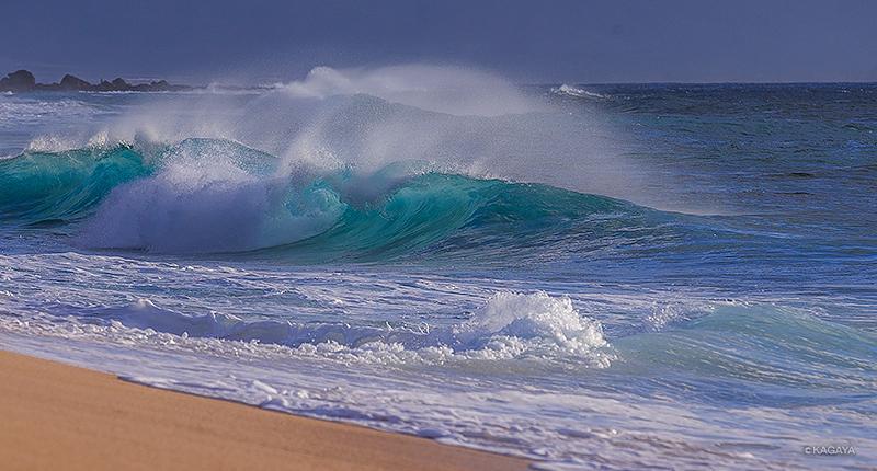 波を大量に撮った(オアフ島にて)。 pic.twitter.com/NVm14K0RuM
