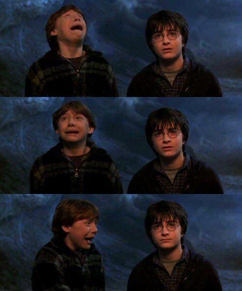 """Harry Potter Universe on Twitter: """"May 24, 1993: Harry Potter and Ron Weasley """"follow the spiders"""" into the Forbidden Forest, and meet Aragog. http://t.co/bSizjTiJ0p"""""""