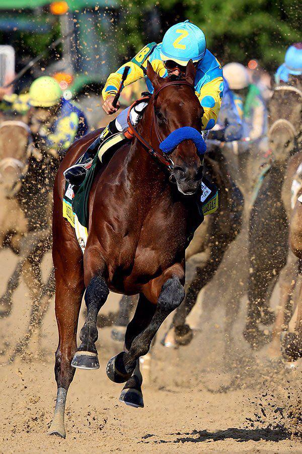 """@RyanBloodstock: Easy win for American Pharoah #triplecrown @BelmontStakes http://t.co/Dum9Pj0SSL"" - What a beautiful shot this is."